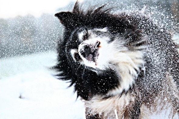 snow-1811877_640