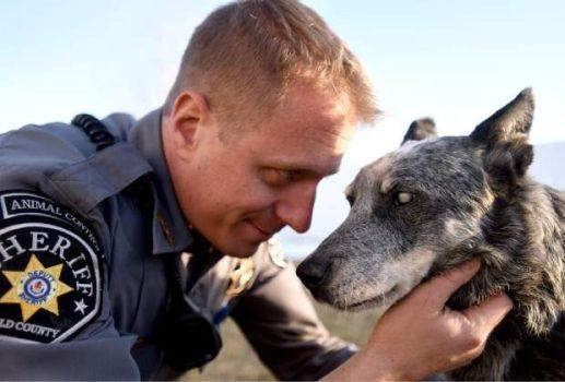 1.12.17 - officer adopts blind dog4
