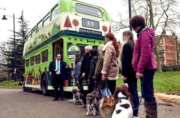 1.18.17 - London Launches World's First Bus Tour for Dogs1