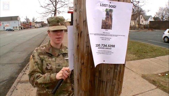 1-4-17-army-private-searching-for-dog-given-away