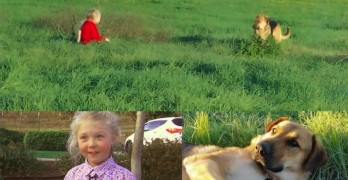 Six-Year-Old Dog Whisperer Rescues Dog That Adults Have Been Trying for MONTHS to Rescue