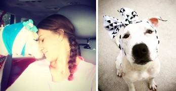 One-Eared Former Bait Dog Sent Dozens of Headbands for Christmas