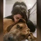 Heartbroken! Army Private Says Sitter Gave Away Dog While She Was In Training