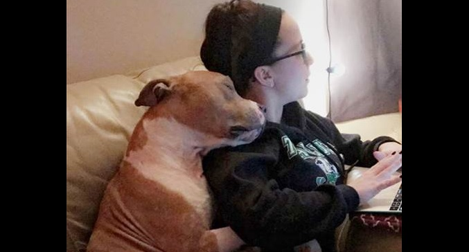 Most Appreciative Rescue Dog Ever Won't Stop Hugging His New Mom