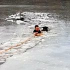 Police Officer Plunges Into Frozen Lake to Save a Drowning Dog