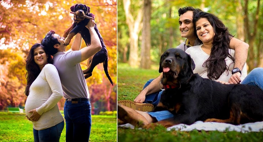 Pregnant Woman Told to Give Up Her Five Dogs Does a Maternity Shoot With Them Instead