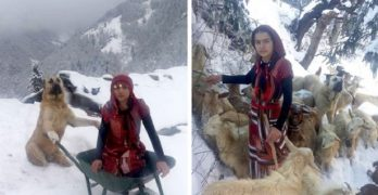 Girl and Her Dog Rescue Mother and Baby Goat They Found Stuck in DEEP Snow