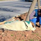 Syrian Refugee Child Stays By Injured Street Dog's Side Until Help Arrives