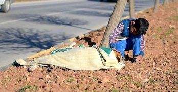Syrian Refugee Child Stays By Injured Street Dog's Side Until Help Arrives