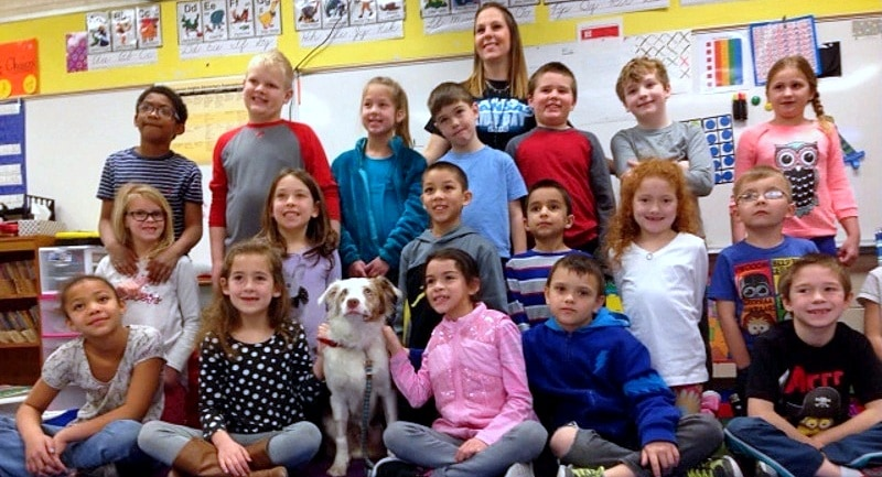 Second Graders Surprised With a Visit From the Puppy They Helped Save