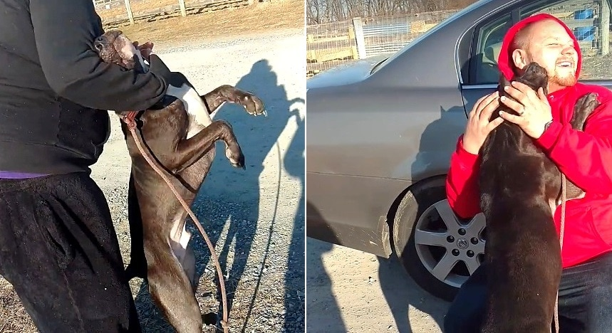 Dog Just Moments from Execution Reunited With the Family Who Never Even Knew He Was Missing