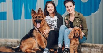 PAW-ternity Leave?! Scotland Brewery Offers Seriously Dog-Friendly Benefits