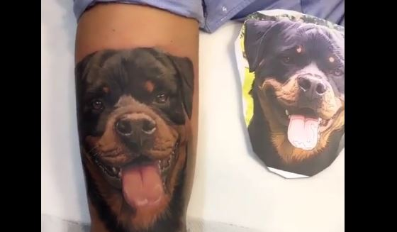 They Go Together Like Tats & Dogs…!