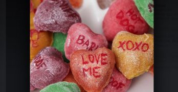 Biscuits for your Boo! Your Canine Will Love These Valentines….