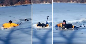 See the Heartwarming Moment a Firefighter Smashed Through an Icy Pond to Save a Drowning Dog