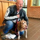 "18-Year-Old Dog Gets Adopted:  ""I Couldn't Let Her Spend One More Night In The Shelter!"""