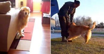 When Dad Comes Home vs. When Mom Comes Home