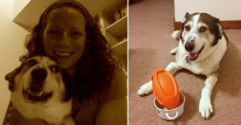 "Woman Creates ""Dating Profile"" for Dog Battling Cancer So People Will Fall in Love With Him"