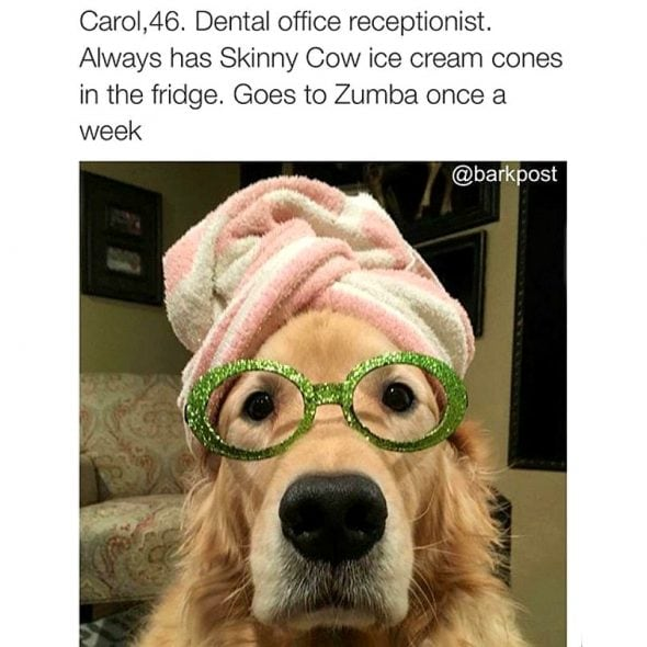41 Dog Bios That Will Definitely Remind You of Someone You