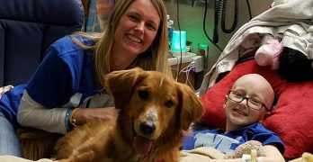 12-Year-Old Battling Brain Cancer Gets Sweet Surprise Visit From Celebrity Dog