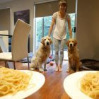 Carbo-Load Contest: Goldens Battle for Spaghetti Supremacy!
