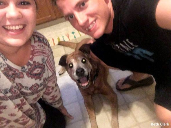 18 year old dog stays alive just long enough to meet his for How many kids do dog and beth have