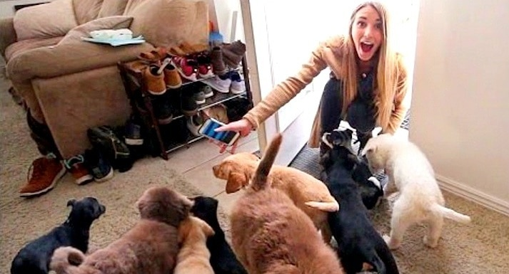 Husband of the Year Surprises His Wife With a Houseful of Rescue Puppies