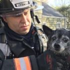 Emergency Crews Rescue Two Dogs and Former Police Chief from House Fire