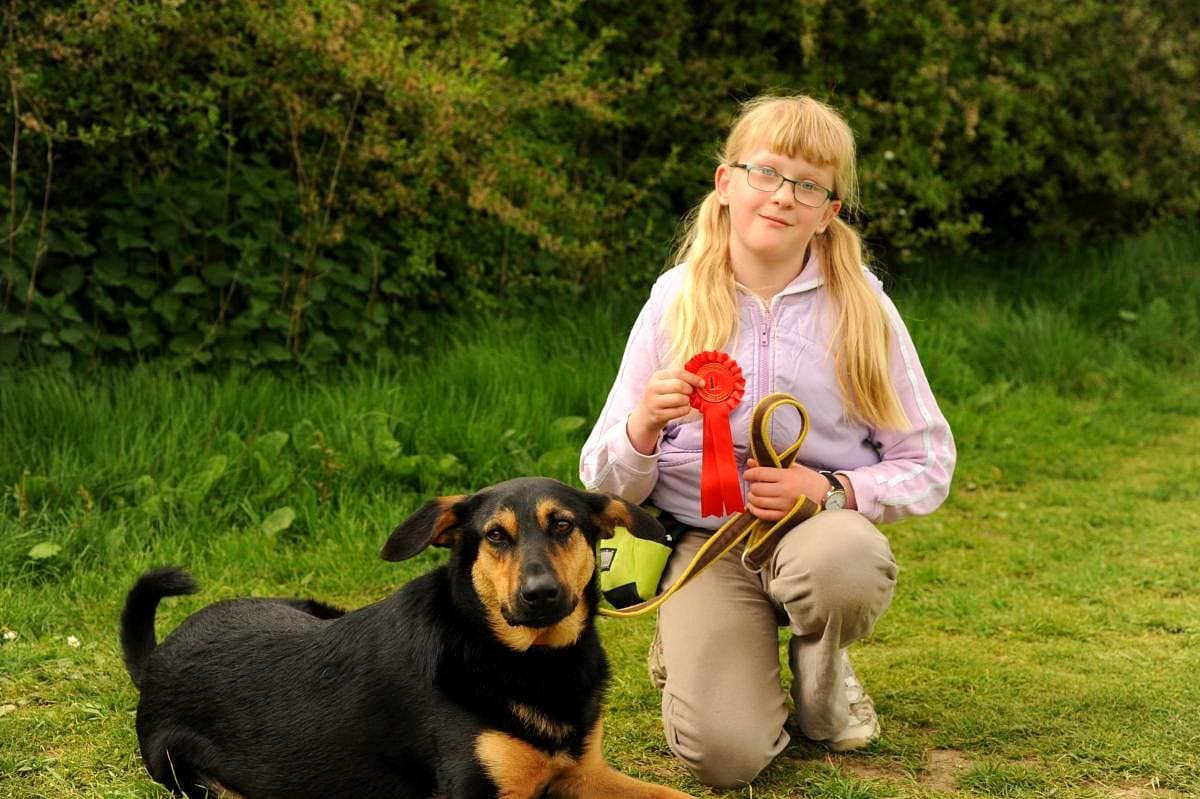 Rescued Romanian Street Dog Wins a Top Honor at a Dog Show