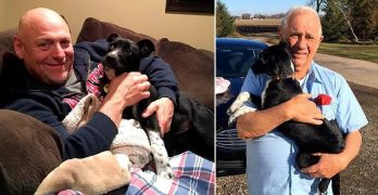 Sheriff Adopts a Rescue Puppy for a Senior Citizen Whose Dog Was Killed