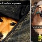 12 Silly Snaps to Start Your Weekend Off Right