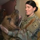 PUPDATE: Army Private Reunited With Dog Following Court Battle!