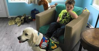 6-Year-Old Boy With Autism Gets Easter Surprise: A Service Dog!