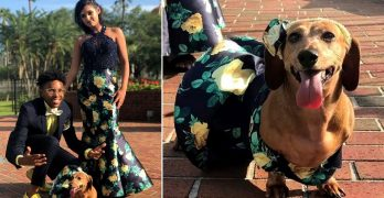 This Teen Loves Her Dog So Much That She Made Her a Matching Prom Dress
