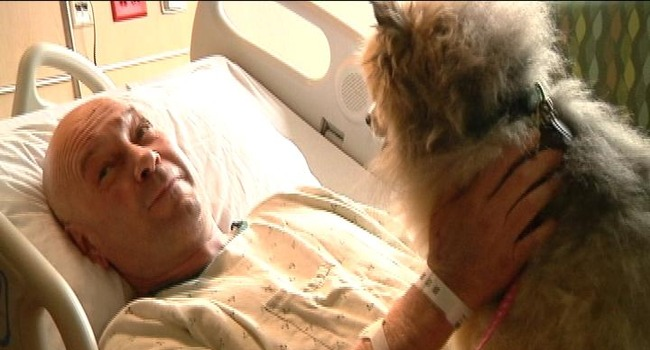 Touching Hospital Reunion: Tornado Survivor Greets Dogs He Thought He'd Lost