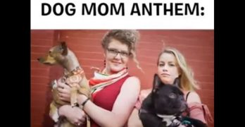 """If You're A Dog Mom, Put Your Hands Up…!"" It's the Dog Mom Anthem!"