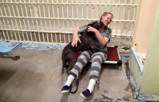 Pooches in the Pen: Former Jail Now An Animal Shelter Where Inmates Care For Dogs