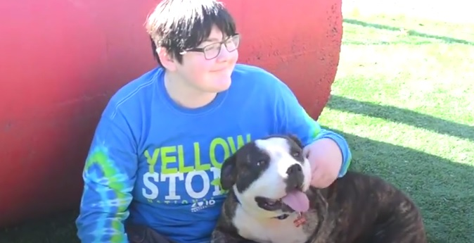 Young Man Who Lost a Leg to Cancer Adopts Three-Legged Dog Who Was Hit by a Car