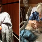 Woman Sneaks Her Sick Grandma's Dog into the Hospital Disguised as a Baby