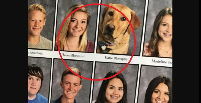 Lifesaving Service Dog Is Honored with a Photo in the School's Yearbook Right Next to Her Human