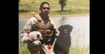 Reunion! Marine Vet Visits The Morale-Boosting Dog Who Kept Him Safe in Afghanistan