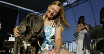 "Ugly Puplings: ""Gassy"" Neopolitan Mastiff Named Martha Wins World's Ugliest Dog"