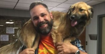 June's Road Trip: Lost Alabama Dog Travels 1,000+ Miles in 11 Days