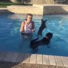 "Get A Load Of This Little Dog's ""Flotation Device!"""