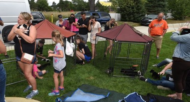 Michigan Woman Turns Her House Into An Adoption Center…EVERY SATURDAY!