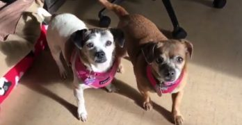 Senior Saturday: Sweet Sisters Polly Anne & Salina Are A Bonded Pair