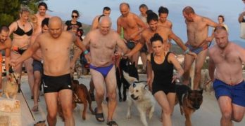 Salty Dogs & Owners Compete at Monty's Dog Beach & Bar in Croatia!