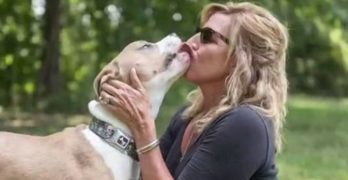"""I'm With Charlie!"" Woman Fights To Keep Her Pit Bull; Community Comes Out In Support"