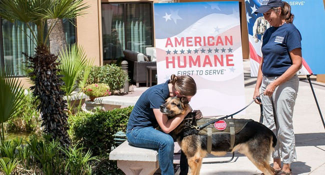 After Six Years Of Service, Military Dog Reunites With Handler – For Good