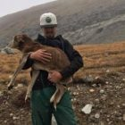 Hikers Rescue Dog Trapped Atop Colorado Mountain for Six Weeks